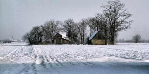 atari-zima-sneg-padavine-zavejani-vojvodina-ravnica-idila-salasi_660x330