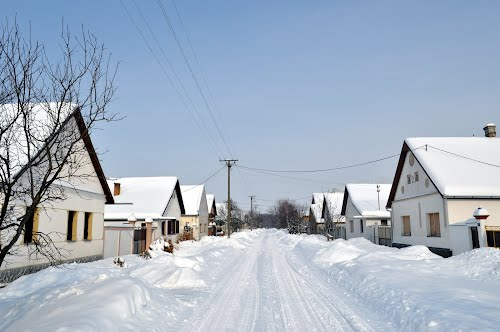 Bački-Brestovac-Zimi