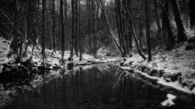Mračna-zimska-šuma-728x409.jpg