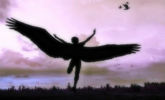krila slobode.jpg