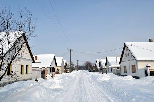 Bački-Brestovac-Zimi.jpg