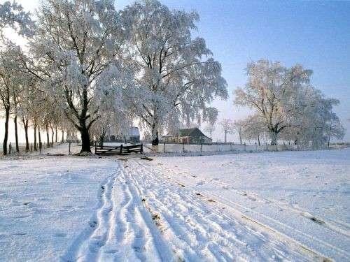 zimska-idila-na-salasu-500x375.jpg