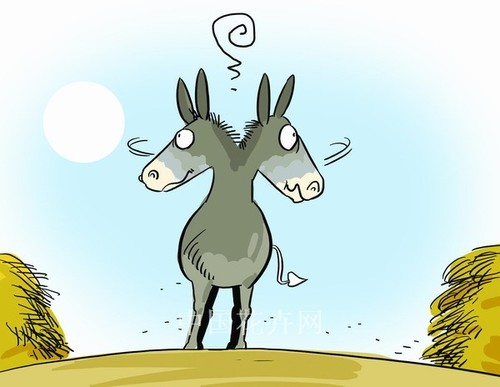 buridanov-magarac