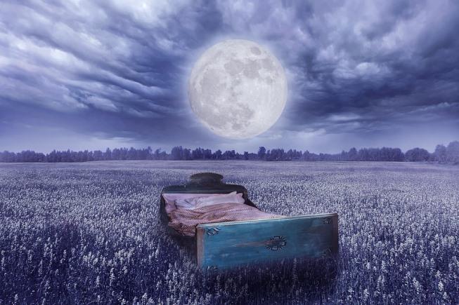 laku-noć